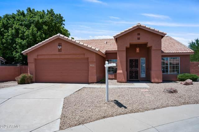 15022 S 47TH Way, Phoenix, AZ 85044 (MLS #6260964) :: Yost Realty Group at RE/MAX Casa Grande