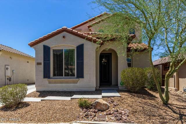 7359 W Milton Drive, Peoria, AZ 85383 (MLS #6260991) :: Yost Realty Group at RE/MAX Casa Grande