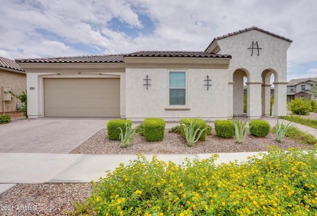 5243 S Wildrose, Mesa, AZ 85212 (MLS #6261086) :: Yost Realty Group at RE/MAX Casa Grande