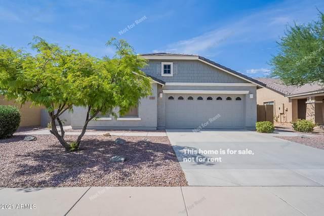 1399 E Anna Drive, Casa Grande, AZ 85122 (MLS #6261129) :: Yost Realty Group at RE/MAX Casa Grande