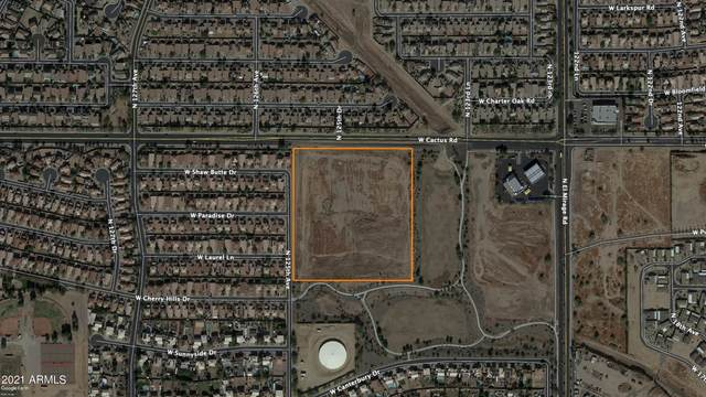 0 W Cactus Road, El Mirage, AZ 85335 (MLS #6261138) :: Keller Williams Realty Phoenix
