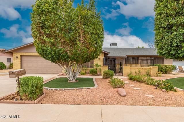4621 W Poinsettia Drive, Glendale, AZ 85304 (MLS #6261146) :: Midland Real Estate Alliance
