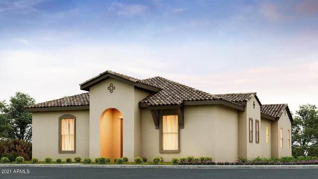11531 N Jerome Street, Surprise, AZ 85388 (MLS #6261154) :: Elite Home Advisors