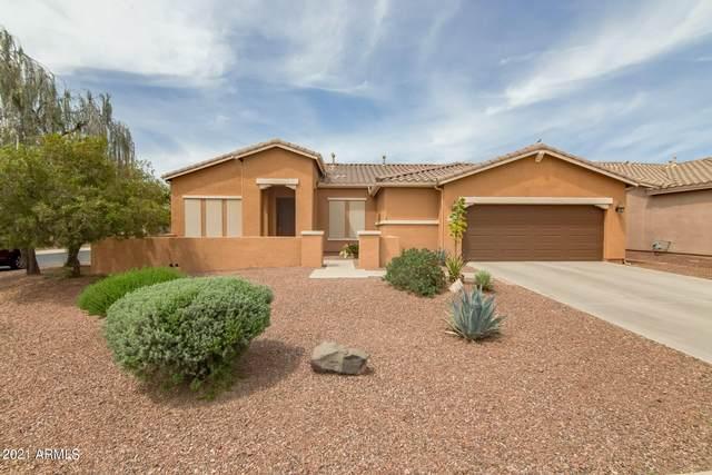 42896 W Misty Morning Lane, Maricopa, AZ 85138 (MLS #6261169) :: Devor Real Estate Associates