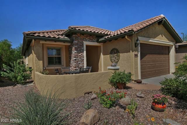 6603 W Mockingbird Court, Florence, AZ 85132 (MLS #6261186) :: Klaus Team Real Estate Solutions