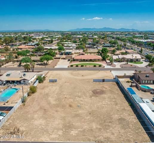 7428 W Grovers Avenue, Glendale, AZ 85308 (MLS #6261187) :: Selling AZ Homes Team