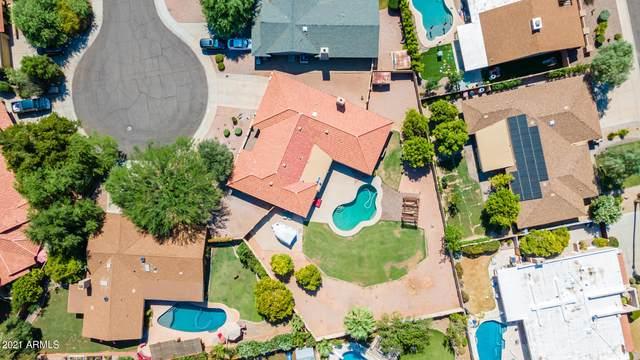 8532 E San Bruno Drive, Scottsdale, AZ 85258 (MLS #6261229) :: Conway Real Estate