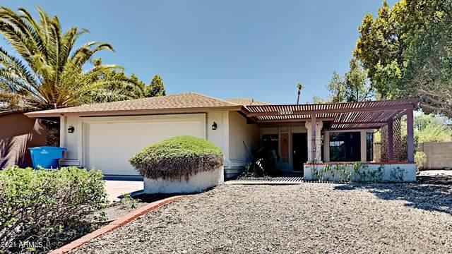 1411 E Monte Cristo Avenue, Phoenix, AZ 85022 (MLS #6261280) :: Elite Home Advisors