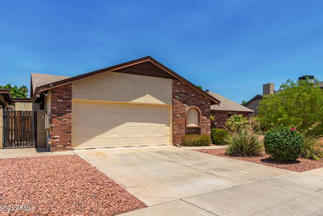 6510 W Gelding Drive, Glendale, AZ 85306 (MLS #6261309) :: Yost Realty Group at RE/MAX Casa Grande