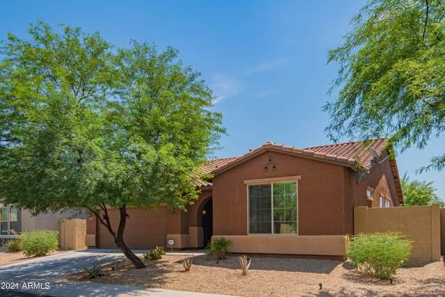 7913 S 41ST Drive, Laveen, AZ 85339 (MLS #6261405) :: Yost Realty Group at RE/MAX Casa Grande