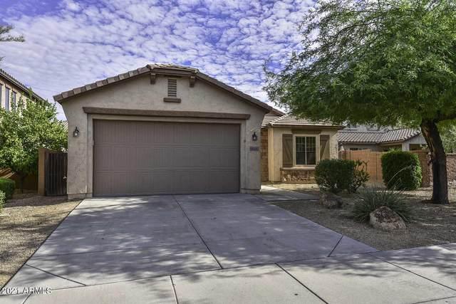 9026 W Pinnacle Vista Drive, Peoria, AZ 85383 (MLS #6261495) :: Yost Realty Group at RE/MAX Casa Grande
