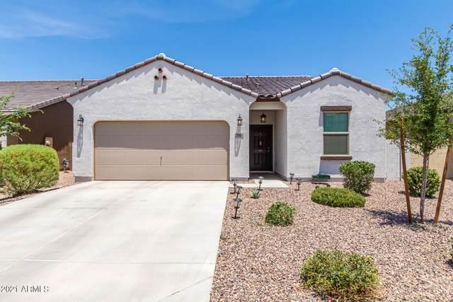 394 W Mammoth Cave Drive, San Tan Valley, AZ 85140 (MLS #6261534) :: Yost Realty Group at RE/MAX Casa Grande