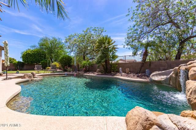 14440 N 177TH Lane, Surprise, AZ 85388 (MLS #6261580) :: Yost Realty Group at RE/MAX Casa Grande