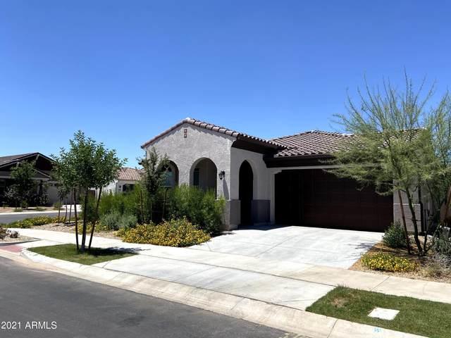 9854 E Thornbush Avenue, Mesa, AZ 85212 (MLS #6261757) :: Klaus Team Real Estate Solutions