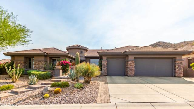 42310 N Bradon Court, Phoenix, AZ 85086 (MLS #6261762) :: Yost Realty Group at RE/MAX Casa Grande