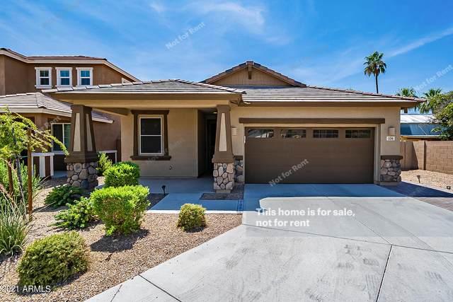 106 S Bermuda Circle, Mesa, AZ 85206 (MLS #6261771) :: Yost Realty Group at RE/MAX Casa Grande