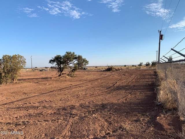 29 S Carol Drive, Williams, AZ 86046 (MLS #6261790) :: Yost Realty Group at RE/MAX Casa Grande