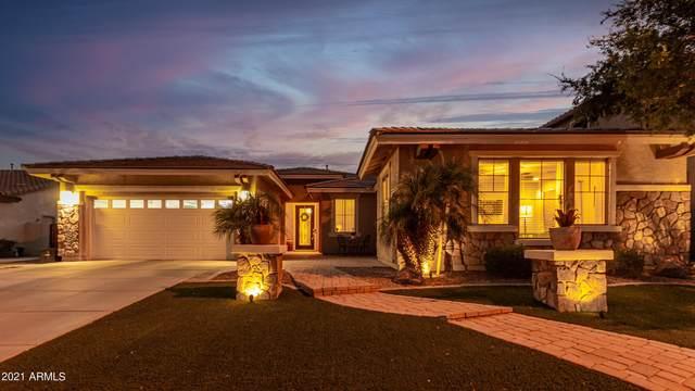 4420 S White Drive, Chandler, AZ 85249 (MLS #6261799) :: Yost Realty Group at RE/MAX Casa Grande