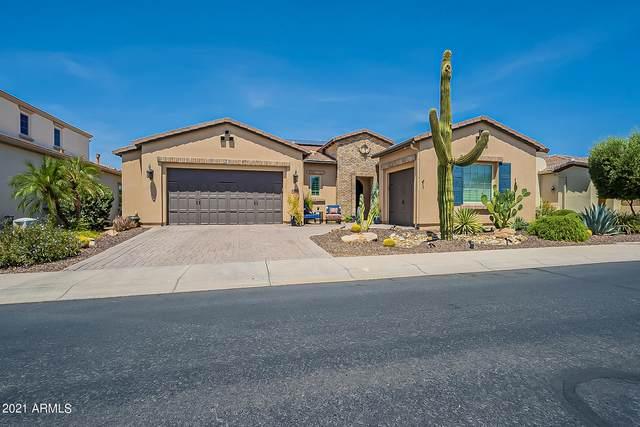 36952 N Crucillo Drive, San Tan Valley, AZ 85140 (MLS #6261859) :: Yost Realty Group at RE/MAX Casa Grande