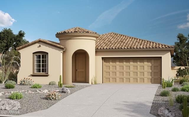 19839 W Pinchot Drive, Buckeye, AZ 85396 (MLS #6261882) :: Yost Realty Group at RE/MAX Casa Grande