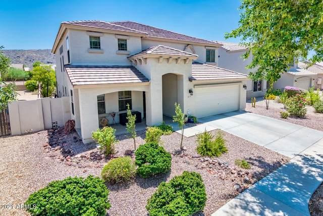 1705 E Beverly Road, Phoenix, AZ 85042 (MLS #6261895) :: Dave Fernandez Team | HomeSmart
