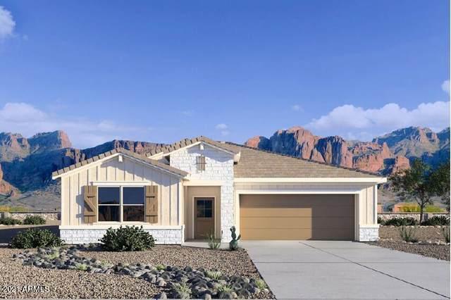 36586 N Asturian Valley Way, San Tan Valley, AZ 85143 (MLS #6261904) :: Yost Realty Group at RE/MAX Casa Grande