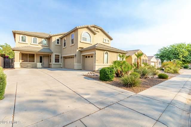 2650 E Bear Creek Lane, Phoenix, AZ 85024 (MLS #6261941) :: Yost Realty Group at RE/MAX Casa Grande