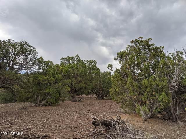 lot 79 N Ranch Rd Road, Vernon, AZ 85940 (MLS #6261977) :: The Daniel Montez Real Estate Group