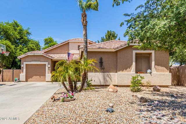 3262 E Bluebird Drive, Gilbert, AZ 85297 (MLS #6262098) :: Executive Realty Advisors