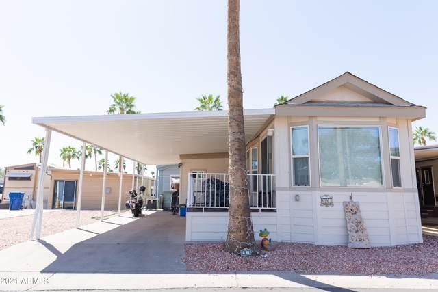 5055 E University Drive, Mesa, AZ 85205 (MLS #6262119) :: Keller Williams Realty Phoenix