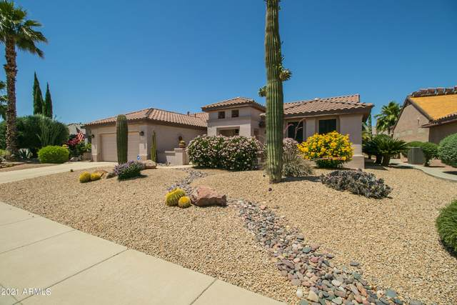 15950 W Wildflower Drive, Surprise, AZ 85374 (MLS #6262157) :: Executive Realty Advisors