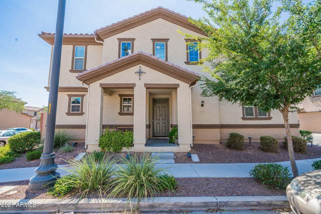 916 S Pheasant Drive, Gilbert, AZ 85296 (MLS #6262216) :: Yost Realty Group at RE/MAX Casa Grande