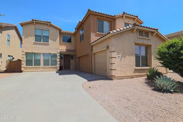 3040 E Cowboy Cove Trail, San Tan Valley, AZ 85143 (MLS #6262290) :: CANAM Realty Group