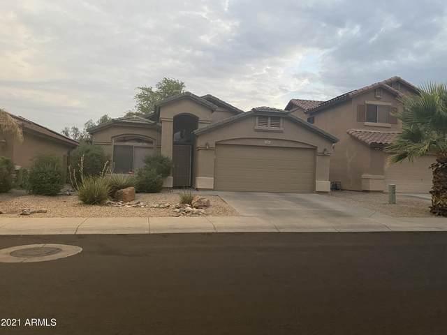 12405 W Palo Verde Drive, Litchfield Park, AZ 85340 (MLS #6262312) :: Keller Williams Realty Phoenix