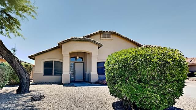 9953 W Potter Drive, Peoria, AZ 85382 (MLS #6262361) :: Yost Realty Group at RE/MAX Casa Grande