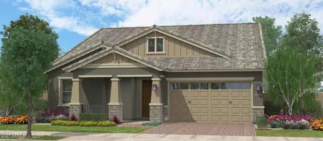 16081 W Electra Lane W, Surprise, AZ 85387 (MLS #6262433) :: Yost Realty Group at RE/MAX Casa Grande