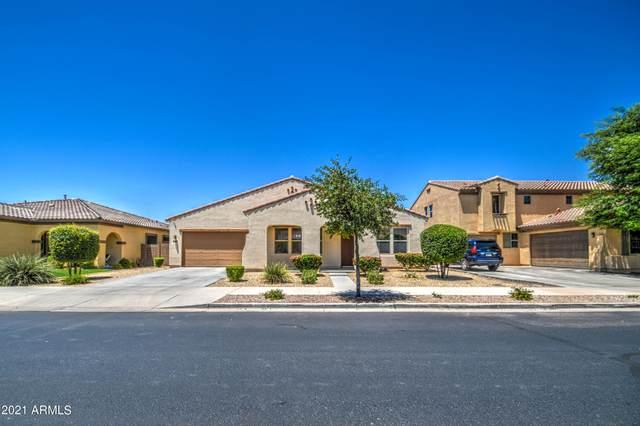 20950 E Sunset Drive, Queen Creek, AZ 85142 (MLS #6262482) :: Yost Realty Group at RE/MAX Casa Grande