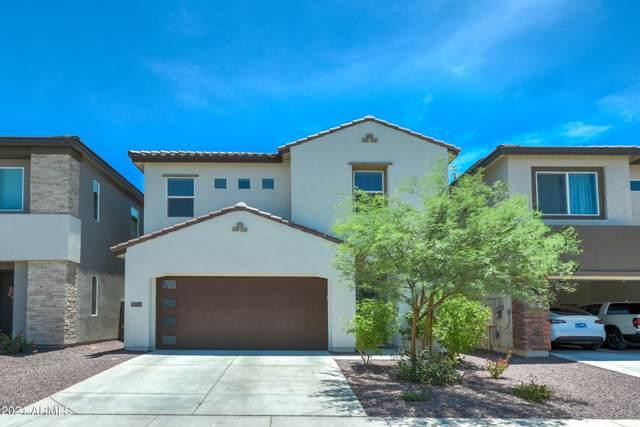 7337 W Phelps Road, Peoria, AZ 85382 (MLS #6262499) :: Yost Realty Group at RE/MAX Casa Grande