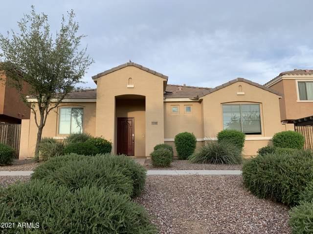 2728 E Megan Street, Gilbert, AZ 85295 (MLS #6262545) :: CANAM Realty Group