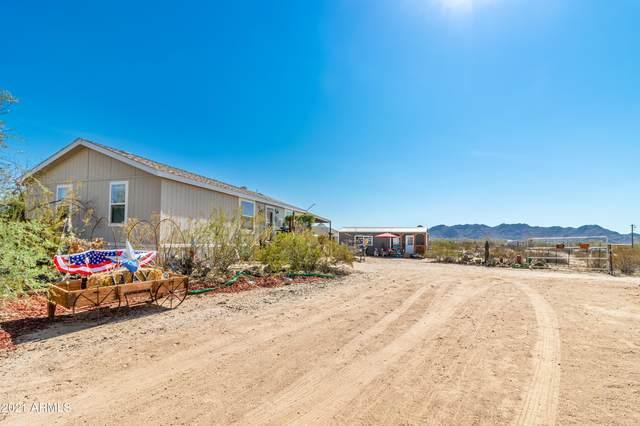 51359 W Pumba Drive, Maricopa, AZ 85139 (MLS #6262561) :: Yost Realty Group at RE/MAX Casa Grande