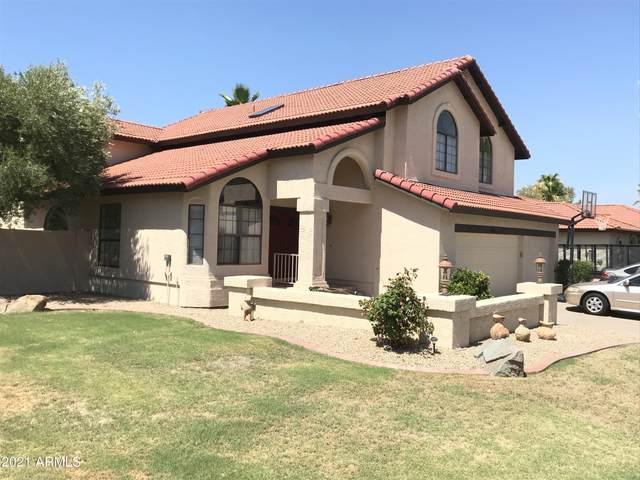 6351 W Crocus Drive, Glendale, AZ 85306 (MLS #6262605) :: Yost Realty Group at RE/MAX Casa Grande