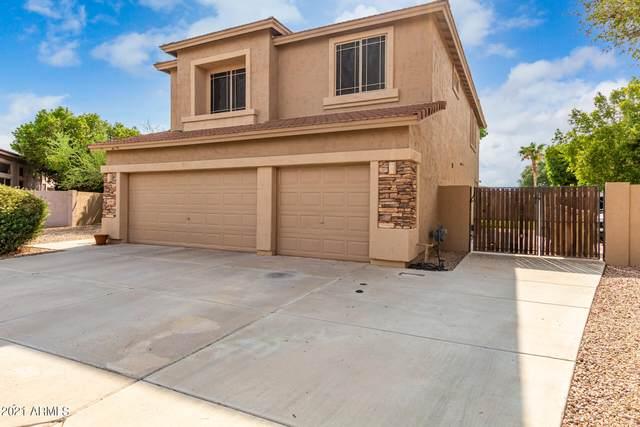 6183 W Oraibi Drive, Glendale, AZ 85308 (MLS #6262641) :: Howe Realty
