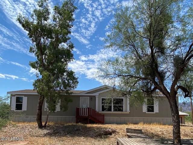 297 S Wade Schandley Drive, Tonto Basin, AZ 85553 (MLS #6262692) :: Yost Realty Group at RE/MAX Casa Grande