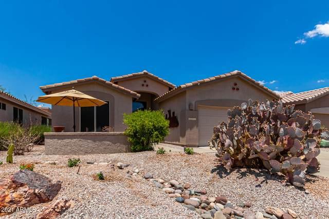 6252 S Cassia Drive, Gold Canyon, AZ 85118 (MLS #6262749) :: Yost Realty Group at RE/MAX Casa Grande