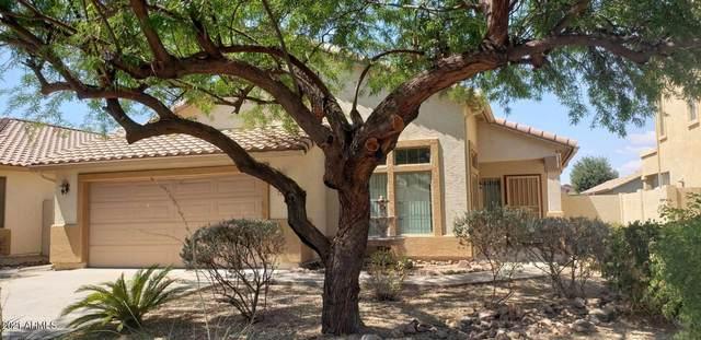 736 W Desert Basin Drive, San Tan Valley, AZ 85143 (MLS #6262801) :: Yost Realty Group at RE/MAX Casa Grande