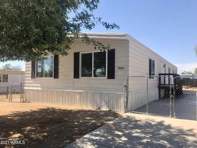 7834 E Jan Avenue, Mesa, AZ 85209 (MLS #6262823) :: Klaus Team Real Estate Solutions