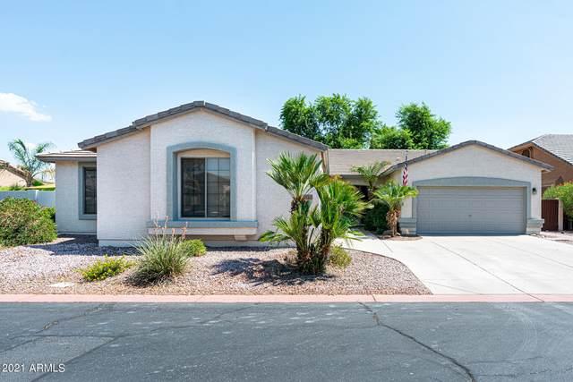 1181 E Hawken Way, Chandler, AZ 85286 (MLS #6262839) :: Yost Realty Group at RE/MAX Casa Grande