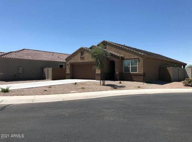 6298 S 251ST Lane, Buckeye, AZ 85326 (MLS #6262912) :: Klaus Team Real Estate Solutions