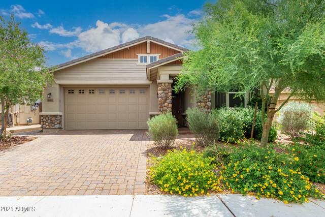 30627 N 137TH Avenue, Peoria, AZ 85383 (MLS #6262971) :: Executive Realty Advisors