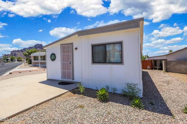 5667 W Rocking Circle Street, Tucson, AZ 85713 (MLS #6263005) :: Zolin Group